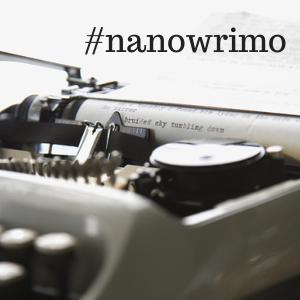 NaNoWriMo – Day 19