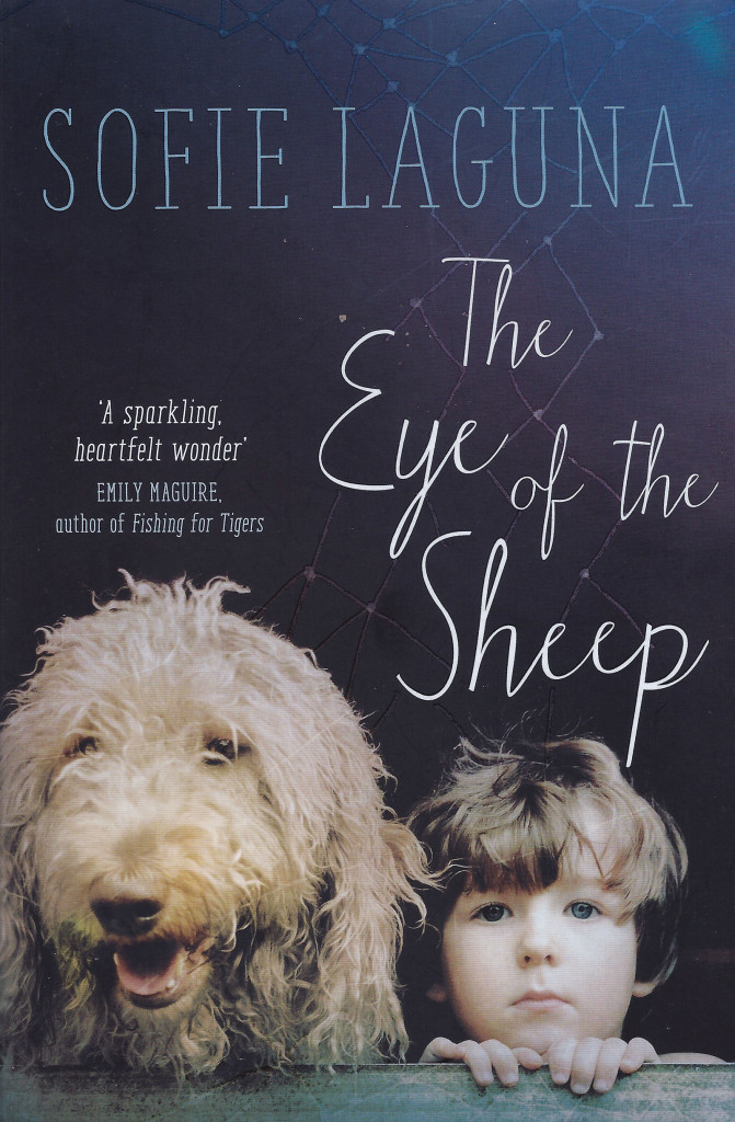 eye-of-the-sheep