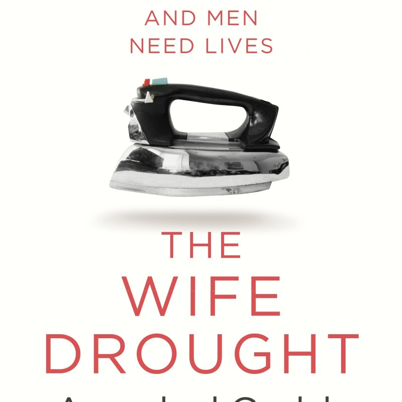 Book review: The Wife Drought